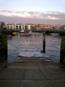 West Dorset-20120204-00616